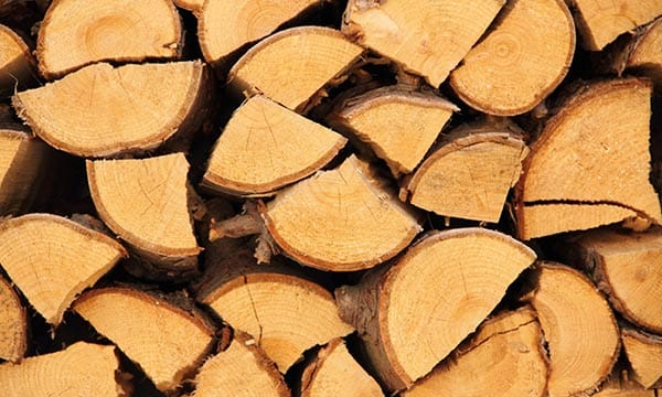 Brennholz und Kaminholz günstig kaufen in Düsseldorf